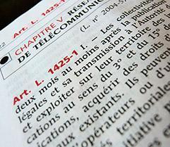 Code général des collectivités territoriales : les concessions